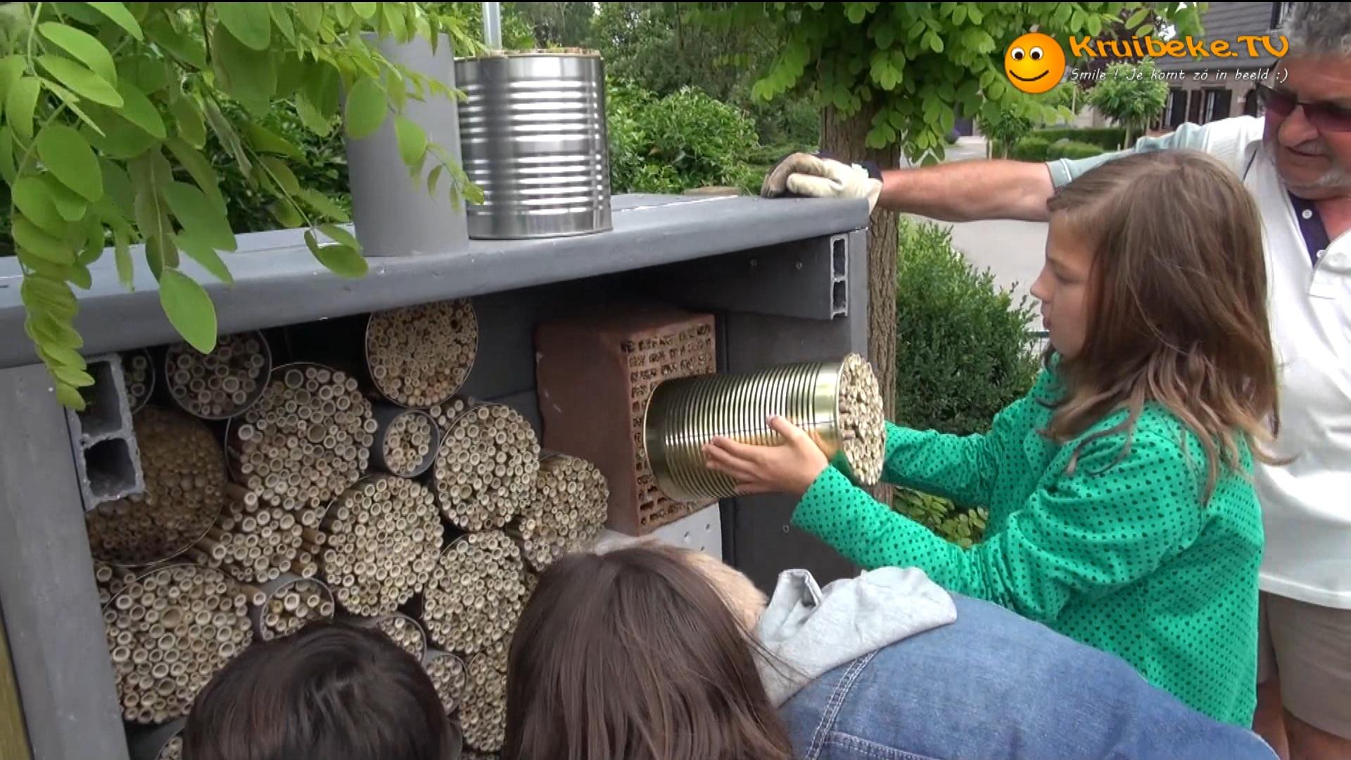 Wij bouwen een insectenhotel