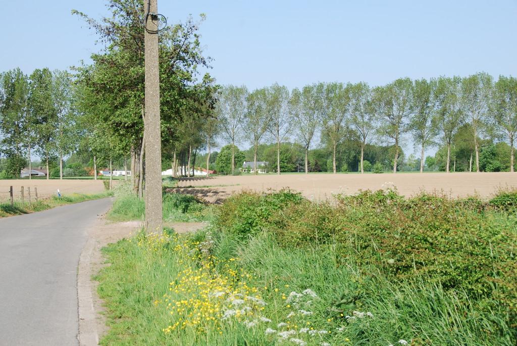 landschappen 2008 (16)