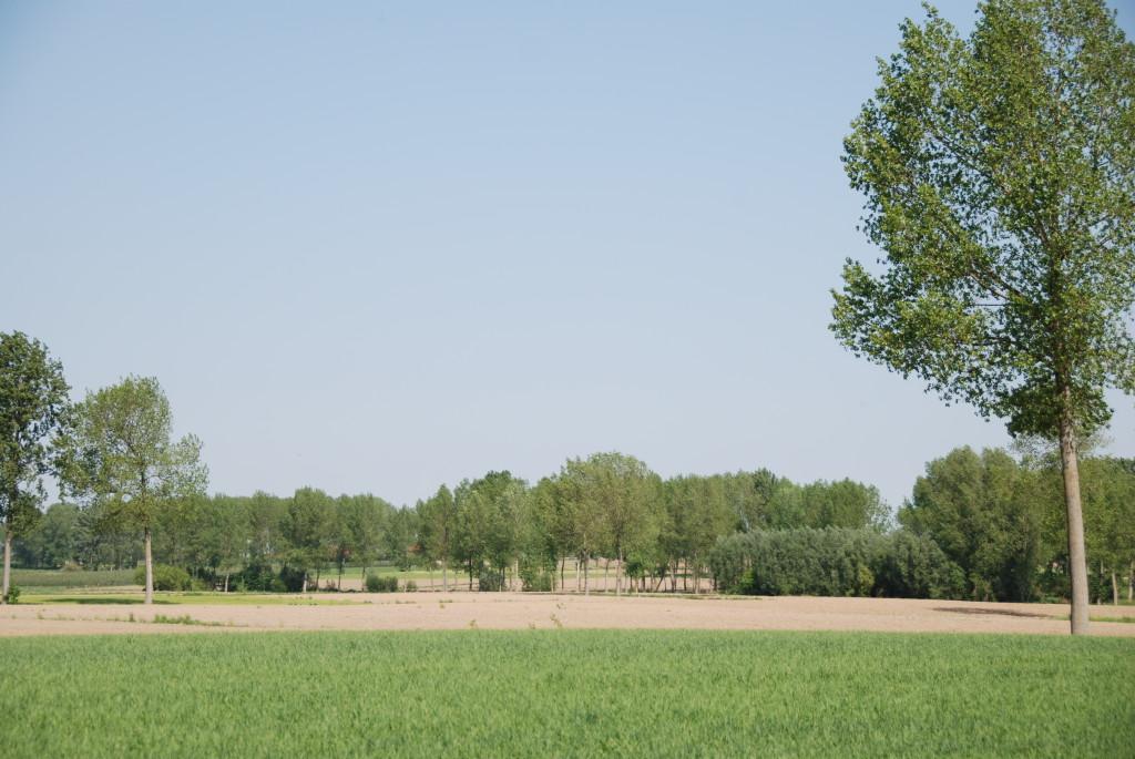 landschappen 2008 (25)