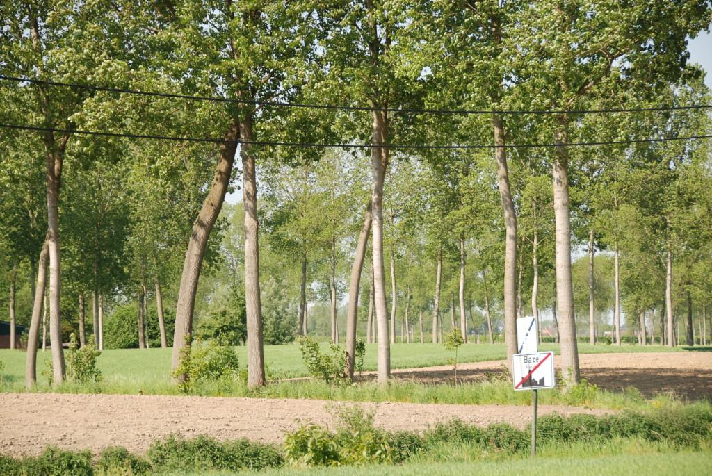 landschappen 2008 (26)