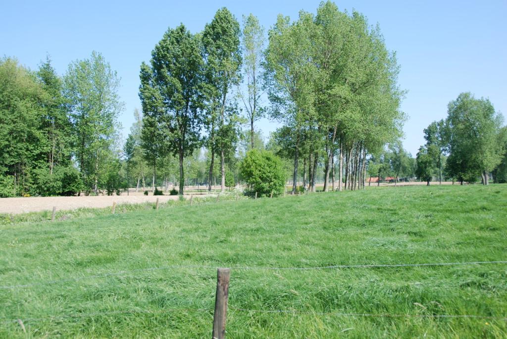 landschappen 2008 (32)