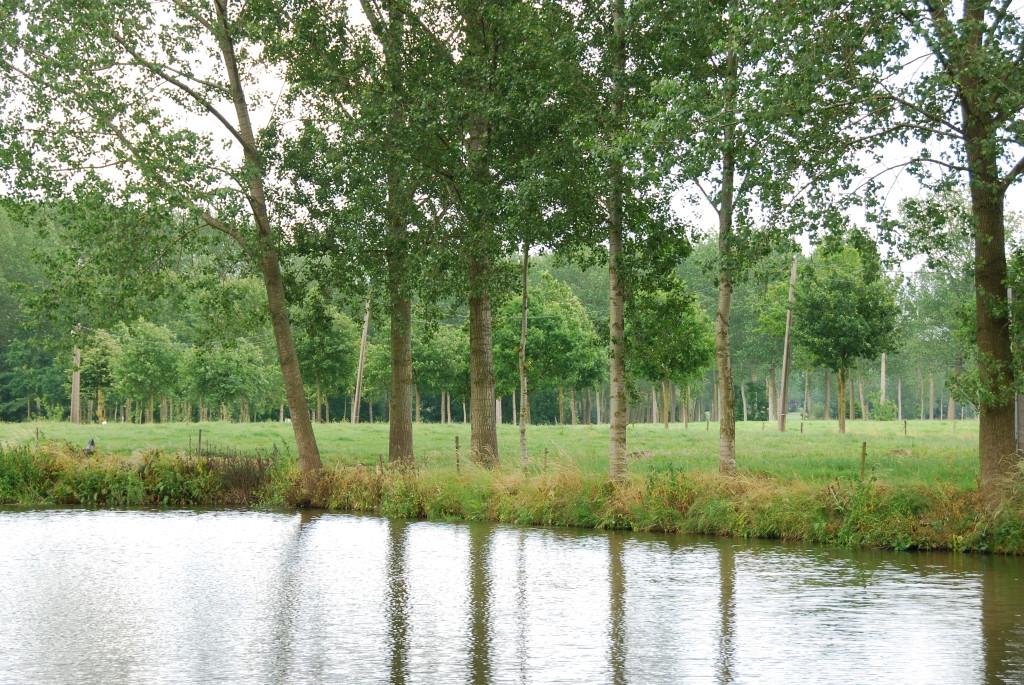 landschappen 2008 (48)