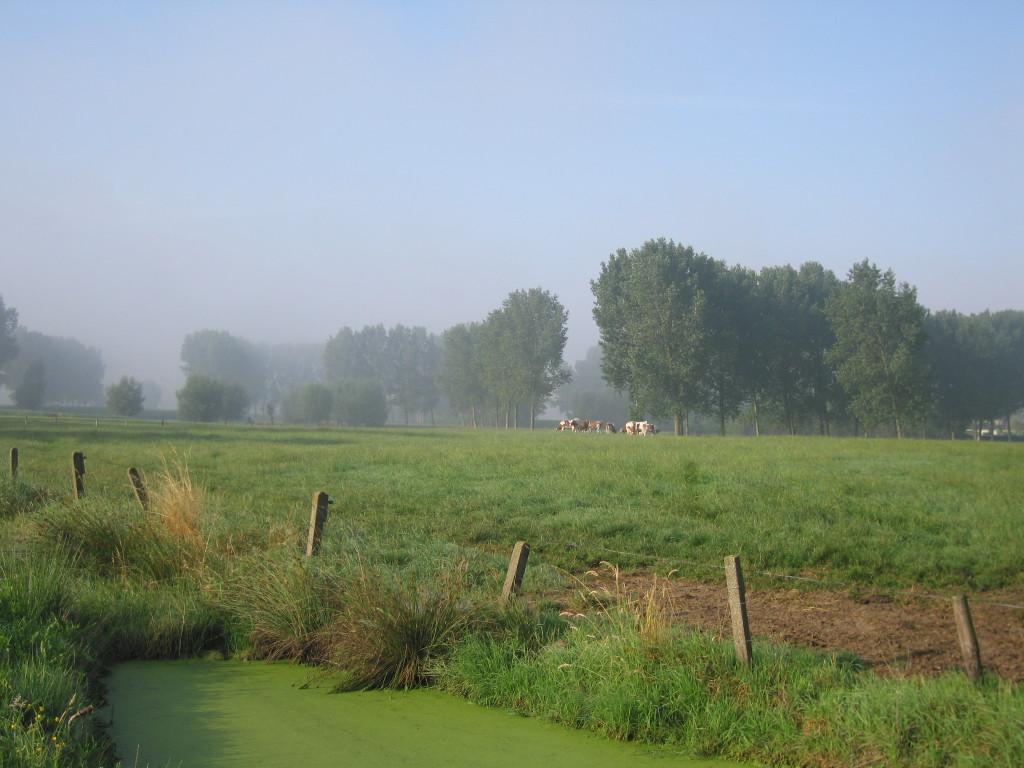 landschappen 2008 (57)