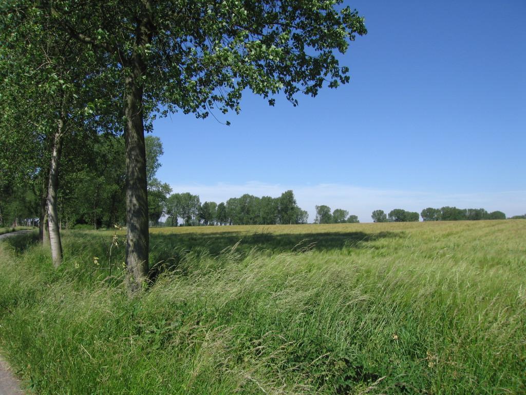 landschappen 2008 (58)
