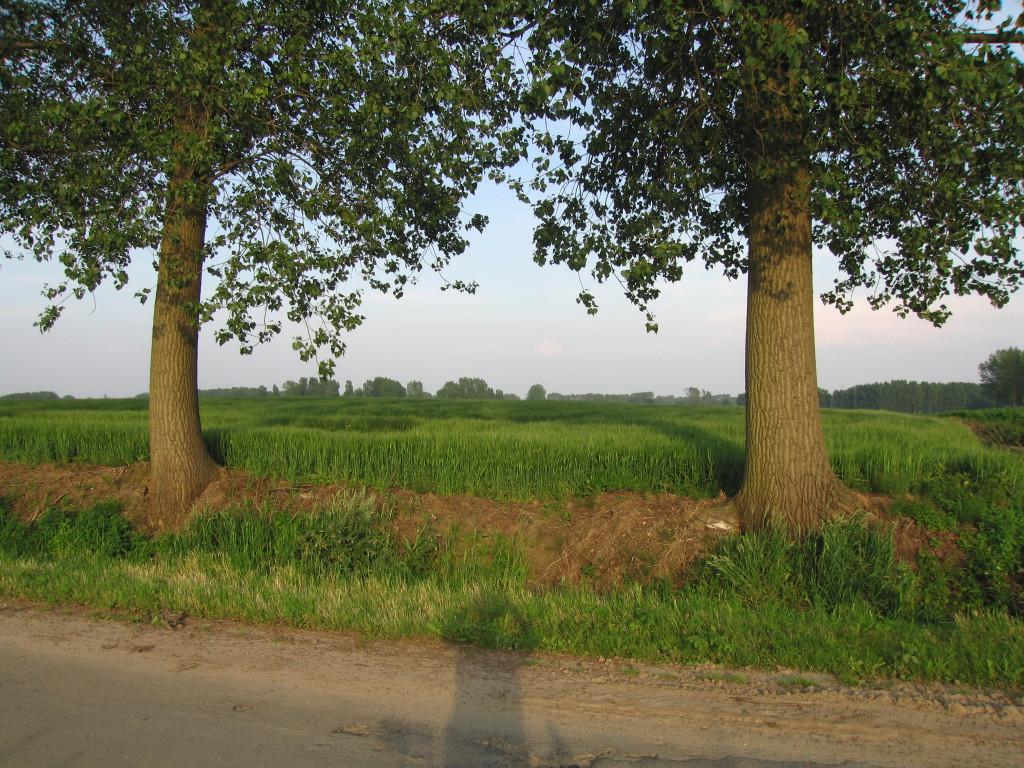 landschappen 2008 (62)