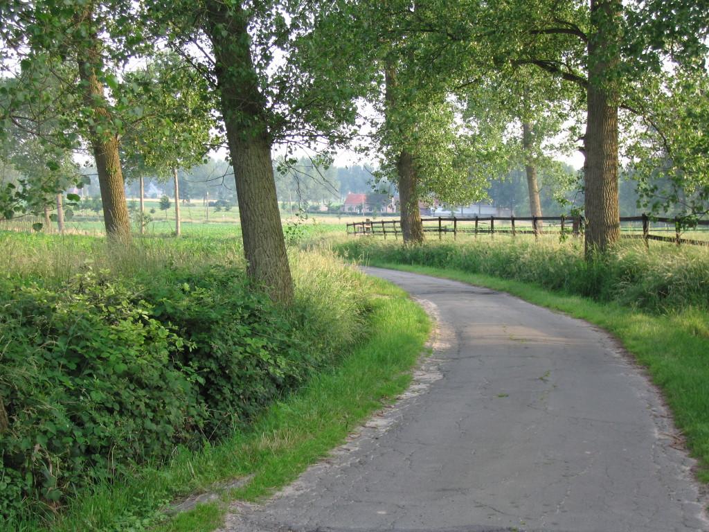 landschappen 2008 (63)