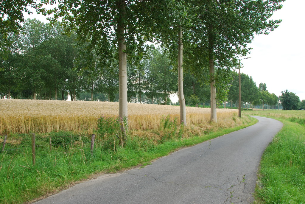 landschappen 2008 (64)