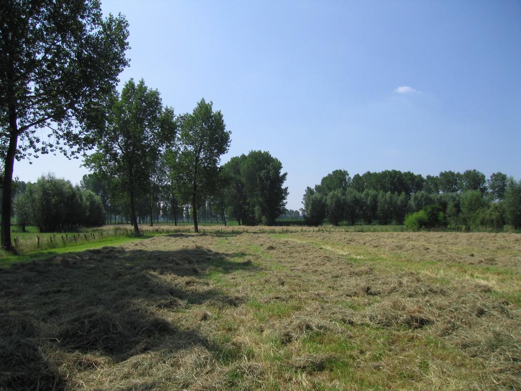 landschappen 2008 (68)