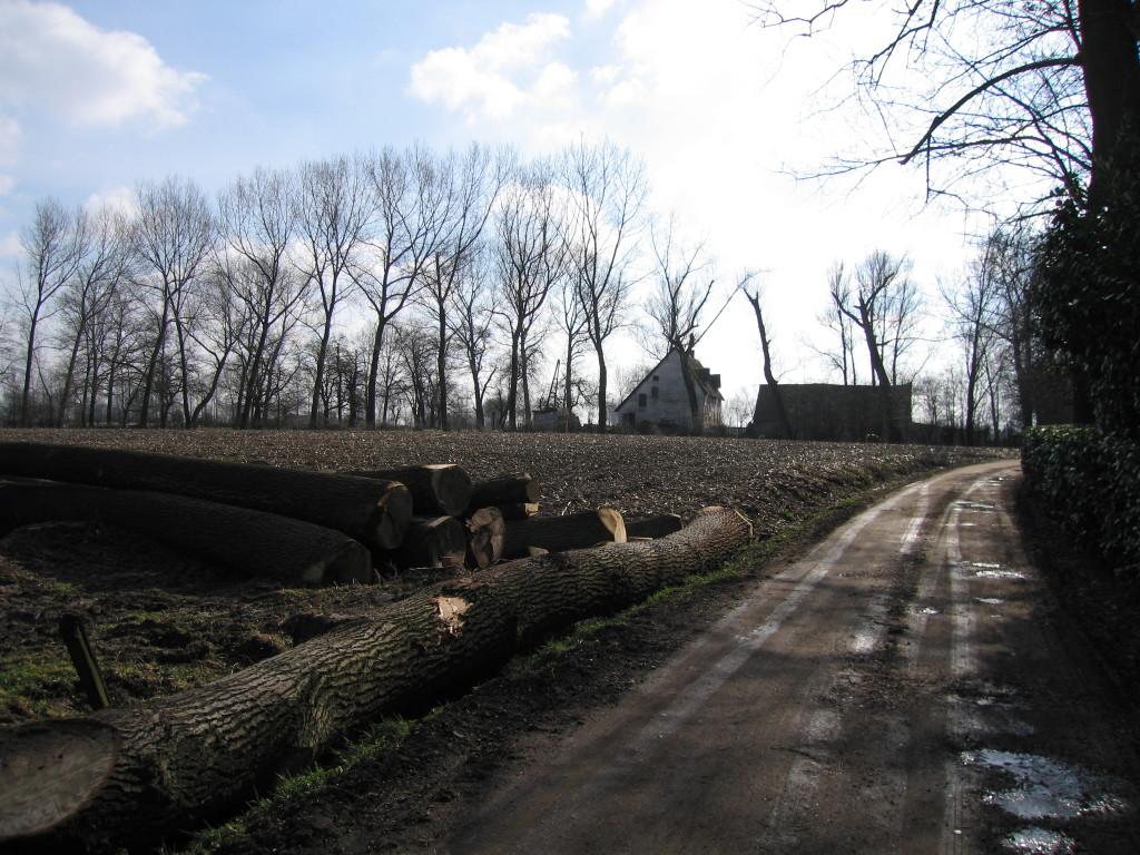 landschappen 2008 (7)