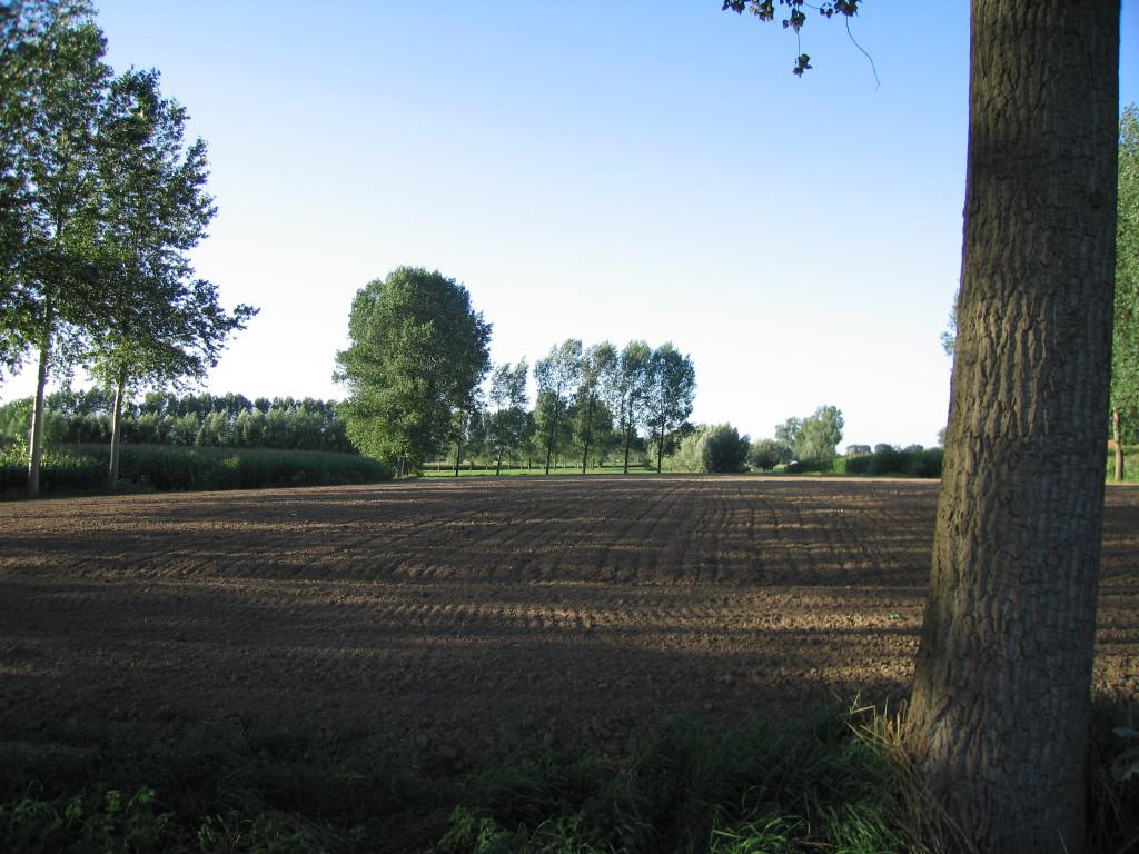landschappen 2008 (70)