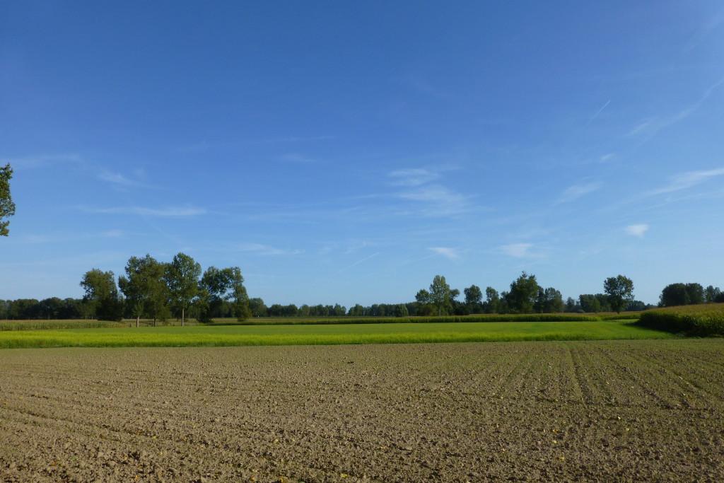 landschappen 2008 (81)