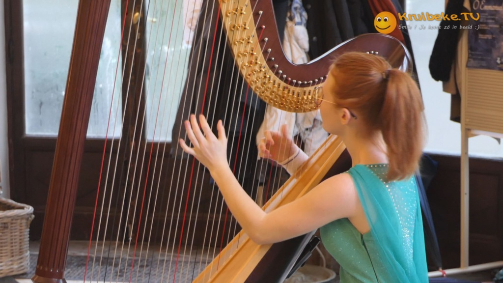 Heerlijke harpmuziek in Kasteel Wissekerke